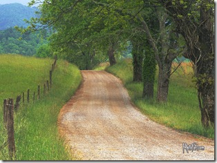Tennessee Country Dirt Road