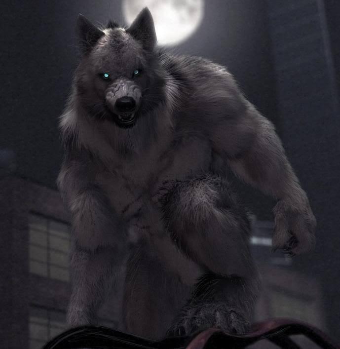Werewolf Harry   Esprit du Coeur Blog